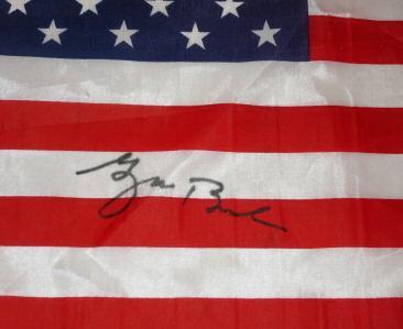 Bush_flag